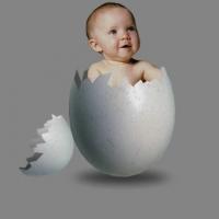 доноры яйцеклеток
